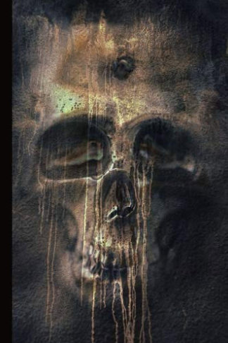 dark thoughts skull journal