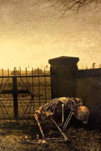 dark thougts skeleton cemetery journal