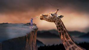 dreaming of a giraffe graveyard gossip